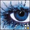 bluebell80