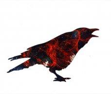 [BlackBird]