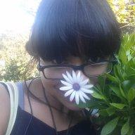 FlowermaidenCindy