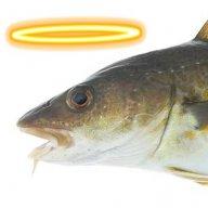Cod God